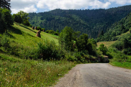 carpathian mountains: a dirt road in carpathian mountains at summer Stock Photo
