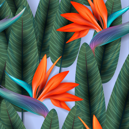strelitzia: Strelitzia pattern. Tropical flower, blossom cluster seamless pattern. Beautiful background with tropical flowers and palm leaves, plant and leaf.