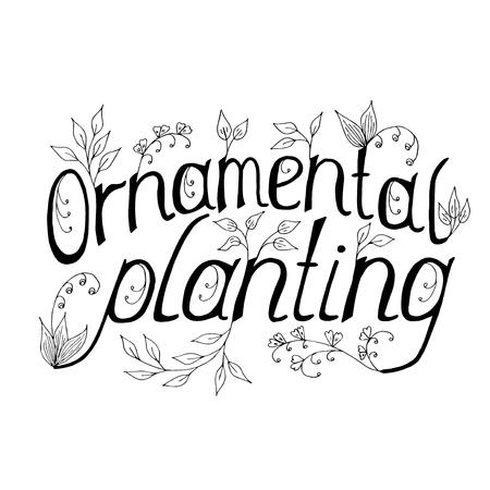 superscription: Ornamental planting  handmade lettering. Vector Illustration  logo, banners, labels, badges, prints, posters, web.