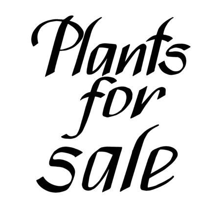 superscription: Plants for sale handmade lettering. Vector Illustration  banners, labels, prints, posters, web.