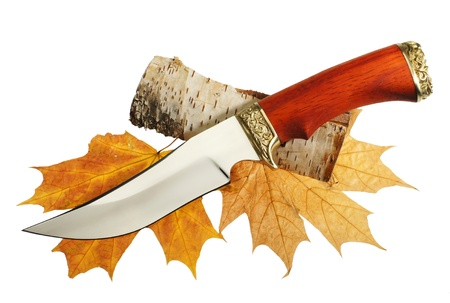 The hunting knife on maple leaves