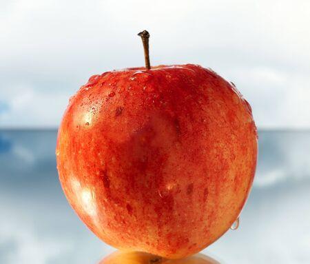 reflexion: Apple con la reflexi�n sobre el cielo Foto de archivo