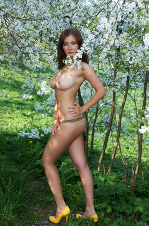 A nude girl in colours of a cherry blossom Stock Photo - 13402190