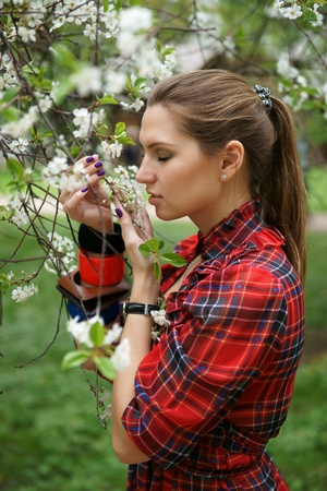 The girl in a cherry garden photo