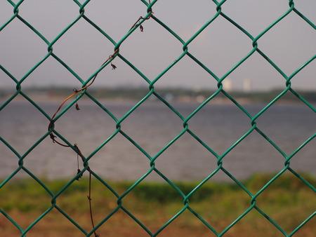 fenced: Fenced!
