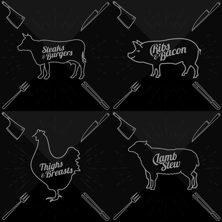 Vector illustration of beef, pork, lamb and chicken and cooking tools. Vector