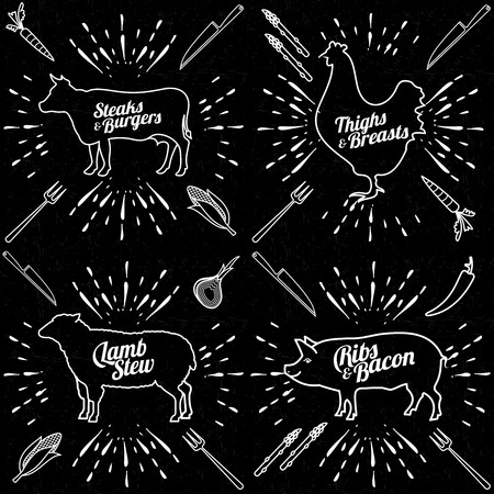 prepared fish: Vector illustration of beef, pork, lamb and chicken and cooking tools. Illustration