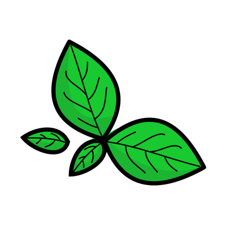 4 820 basil leaves stock vector illustration and royalty free basil rh 123rf com Heart Clip Art Heart Clip Art