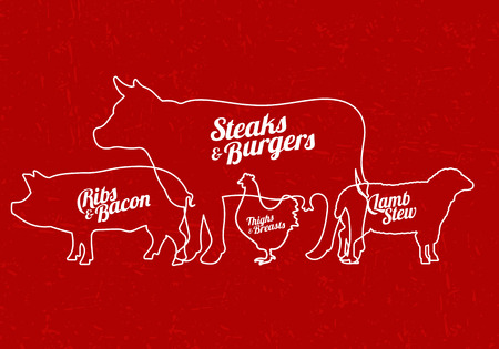 Vector illustration of beef, pork, lamb and chicken, vegetables image, bread, drinks and cooking tools. Vector