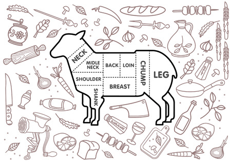 prepared fish: Vector illustration of beef, pork, lamb and chicken, vegetables image, bread, drinks and cooking tools.