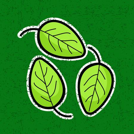 spinat: Frische gr�ne Bl�tter von Basilikum und Spinat Illustration