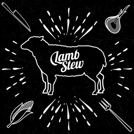 Vector illustration of beef, pork, lamb and chicken, vegetables image, bread, drinks and cooking tools.