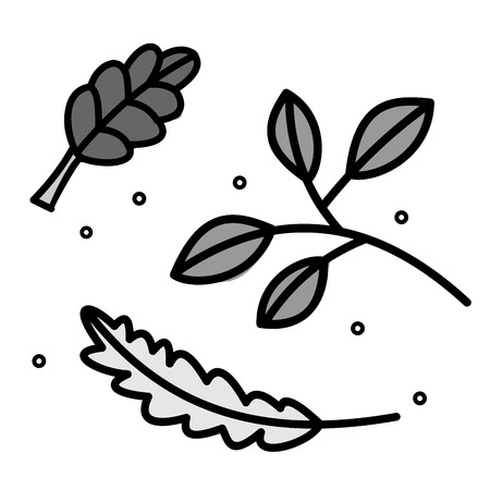 spearmint: Lettuce, basil and peppercorns