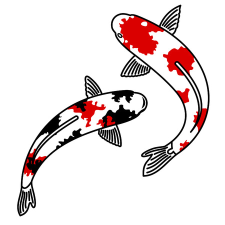 Vector image of japanese carp koi