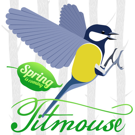 titmouse: Bird titmouse vector card. Trees, tree buds, thaw, birds. Web graphics, banners, advertisements, brochures, business templates Isolated on a white background