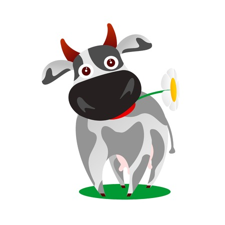 Vector flat illustration of a funny cow. Fork and bucket. Cartoon vector illustration isolated on white background. Comic cow character, design elements.