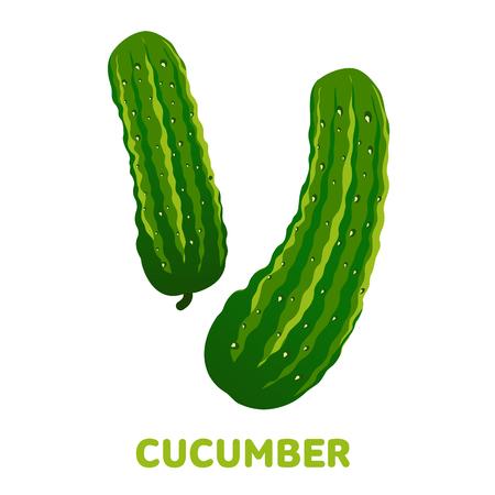 Illustration plate du concombre frais. Concombre pour le marché agricole, conception de recette de salade végétarienne. Insignes de concombres, étiquettes. Illustration vectorielle isolé sur fond blanc Banque d'images - 81897026