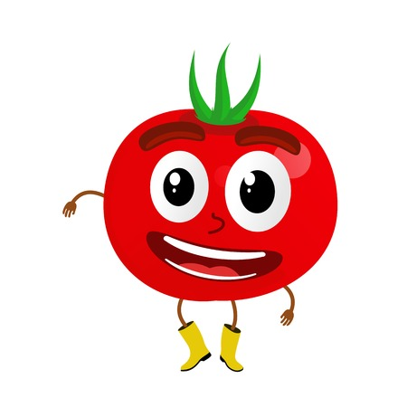 Funny tomatoes character cartoon vector illustration isolated on white background. Humanized tomatoes with smiling faces, arms and legs. Tomatoes for farm market, vegetarian salad recipe design.