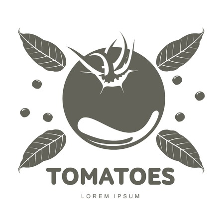 Tomatoes logo templates for your design. Home canning, tomatoes, marinade, black peppercorn, bay leaf, brine. Pickled tomatoes badges, labels. Vector illustration isolated on white background