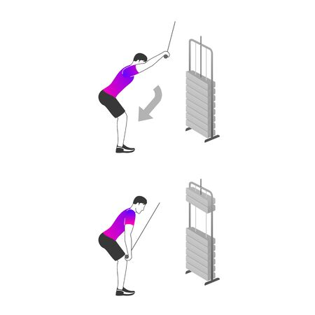 Fitness exercises for strong and beautiful Back and Biceps. Fitness, Aerobic and workout exercise in gym. Vector set of gym icons in line style isolated on white background. People in gym. Gym equipment. 矢量图像