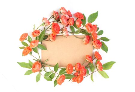 Flowers composition. Frame from rose flowers on white background. Spring, summer, easter concept. Flat lay, top view, copy space