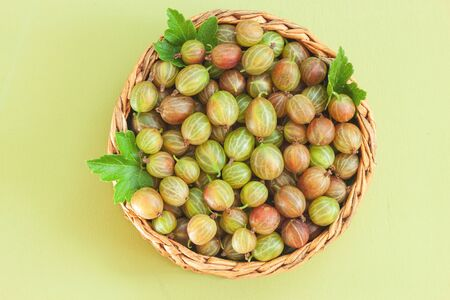 Fresh gooseberries in wicker basket on green background. Summer berry Top view.
