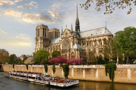 seine: Paris, Notre Dame cathedral with blossomed tree