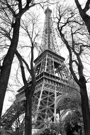 Eiffel Tower in black and white style, Paris, France  photo