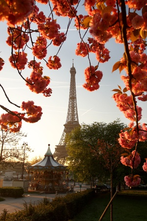 Spring morning with Eiffel Tower, Paris, France  Stock Photo - 12158914