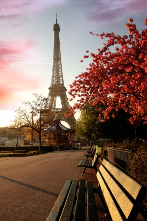 Frühlingsmorgen mit Eiffelturm, Paris, Frankreich Standard-Bild