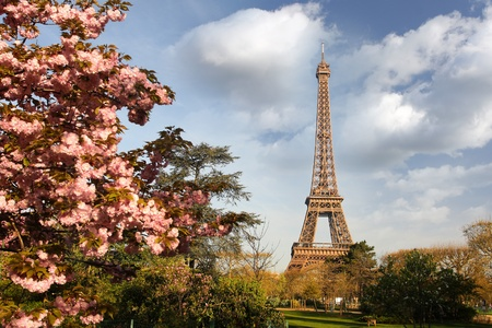 Spring morning with Eiffel Tower, Paris, France  Stock Photo - 12159215