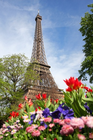 eiffel tower architecture: Spring morning with Eiffel Tower, Paris, France