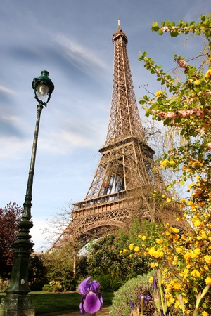 paris  france: Spring morning with Eiffel Tower, Paris, France