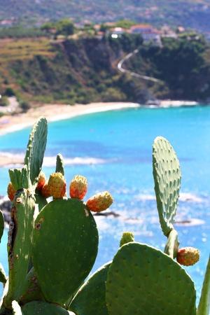 turkey beach: Fantastic Calabria azure coast in Italy