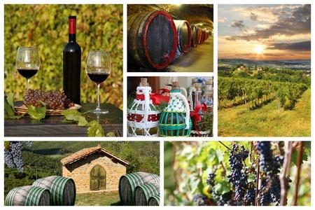 Set of wine photos photo