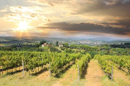 Chianti paesaggio vigneto in Toscana, Italia photo