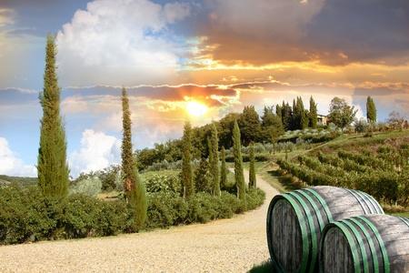 vi�edo: Chianti vi�a del paisaje de la Toscana, Italia