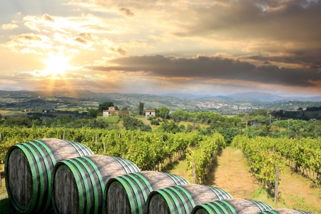 wine road: Chianti vineyard landscape in Tuscany, Italy