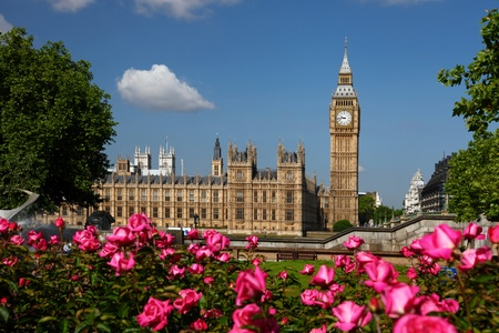 spire: Big Ben with roses in London, UK