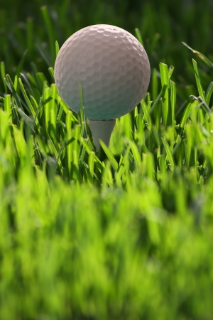 Golf ball on tee against fresh grass Stock Photo - 13967198