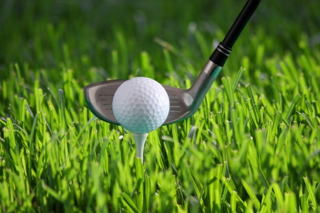 Golf ball on tee against fresh grass photo
