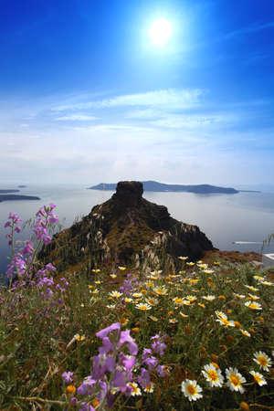 Santorini in nature with plenty flowers, Greece photo