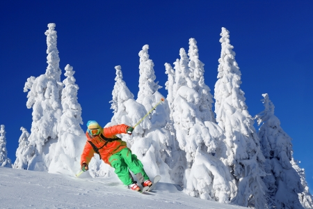 powder snow: Skier skiing downhill in high mountains
