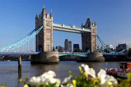 thames: Famous Tower Bridge in London, England