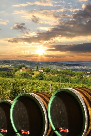 chianti: Chianti vineyard landscape in Tuscany, Italy