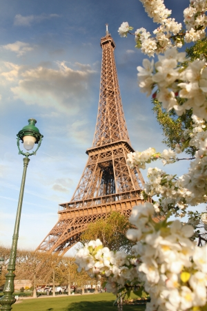 eiffel tower: Eiffel Tower in spring time, Paris, France