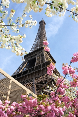 spring time: Eiffel Tower in spring time, Paris, France