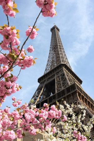 Eiffel Tower in spring time, Paris, France