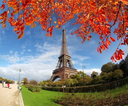 paris france: Eiffel tower against autumn tree in Paris, France