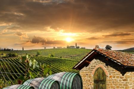 aratás: Chianti szőlőültetvény táj Toszkána, Olaszország